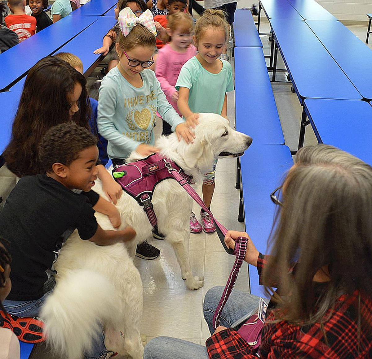 Students at Gordon Elementary School meet one of the Love on a Leash therapy dogs and it's owner.