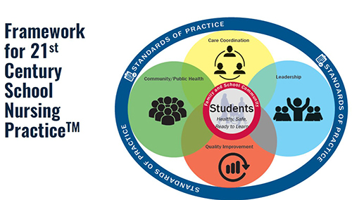 Framework For School Nursing