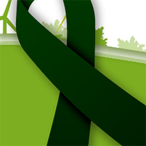 DoDEA Green Ribbon Schools